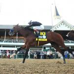Key Takeaways from Kentucky Derby Weekend