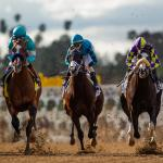 Haskin's Derby Dozen for April 8