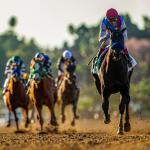 Which Horse Finished First in the Final Breeders' Cup Classic Rankings?