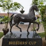 OwnerView to Host In-Person Thoroughbred Owner Conference Breeders' Cup Week