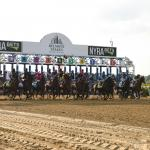2021 Belmont Stakes at a Glance
