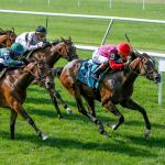 Where to Watch/Listen: Horse Racing Coverage for July 8-12
