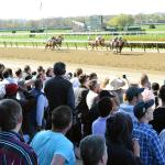 Uncovering Two Live Longshots in the Met Mile