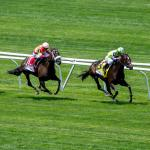 Betting Horse Racing Online: Dos and Don'ts from Team ABR