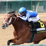 Live Longshots to Consider When Betting the 2020 Breeders' Cup