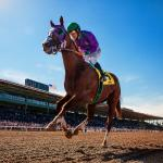 Stars of Yesterday: Looking Back at Best San Felipe Stakes Winners