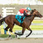 Top Win Contenders in Tampa Bay Derby