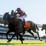 NYRA Unveils Turf Triple Series for 3-Year-Olds Beginning Summer 2019
