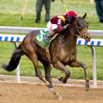 Did Remsen Confirm Catholic Boy as More Than Derby Prayer?