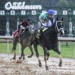 Kentucky Derby Futures: Trends to Watch for Jan. 19