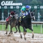 Making Money Betting Uncontested in Southwest Stakes