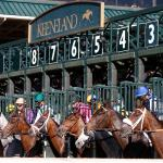 2020 Ashland Stakes at a Glance