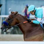 Where Does Rising Star Charlatan Fit on Fluid 2020 Triple Crown Trail?