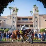 Breeders' Cup Trends from Santa Anita Should Translate to Del Mar