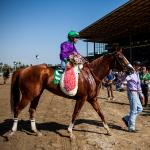 Where to Look For Next Year's Star 3-Year-Olds: Start In California