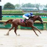 Betting a Major Longshot in the Clark Stakes