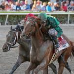 Five Key Takeaways from Fountain of Youth Stakes Day