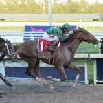 Future Looks Especially Bright for Derby Hopeful Code of Honor