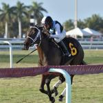Best Bets: Banking on Equipment, Trainer, and Jockey Changes