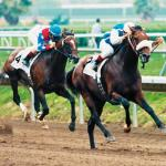 Del Mar History: Dare and Go Upsets Cigar in the Pacific Classic