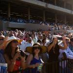 Learning the Game with Richard Eng: Racing's Top-Dollar Entertainment Value