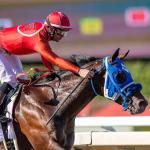 'Wait 'Til Next Year' Has Arrived for Breeders' Cup-Bound Dr. Schivel