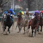 Haskin's  Derby Dozen for March 14