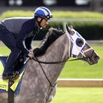 Turf Writers Ehalt and Pedulla Pick the Belmont Stakes Superfecta