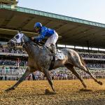 Five Key Takeaways from Belmont Stakes Saturday