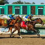 Best Bets: Lecomte Stakes Standout, Trio of Longshots