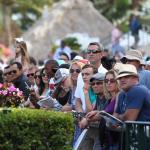 Where to Watch/Listen During Florida Derby and Dubai World Cup Week