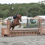 Fair Hill Show Helping to Build Demand for Thoroughbreds