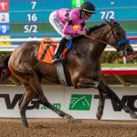 Best Bets: Santa Anita Single, Gulfstream Price Plays