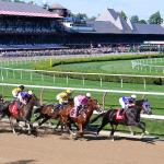 Where to Watch/Listen During Travers Week