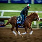 Five Questions to Be Answered in the Breeders' Cup Juvenile