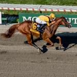 Where to Watch/Listen: Haskell Weekend and Openers at Saratoga and Del Mar