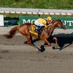 Five Questions to Be Answered in 2019 Haskell Invitational
