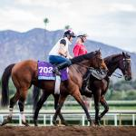 Backing a Rising Star in the Breeders' Cup Juvenile
