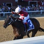 Five Breeders' Cup Juvenile, Derby Hopefuls to Follow From 2021 Saratoga Meet