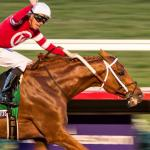 Gun Runner Sensational in Breeders' Cup Classic Win