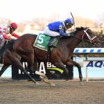 What to Make of Gotham Stakes Winner Haikal on 2019 Derby Trail