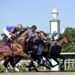 Using History to Handicap the 2021 Haskell Stakes