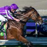 Breeders' Cup Winner Highland Reel Scores at Royal Ascot