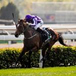 Highland Reel Dazzles in the Longines Hong Kong Vase