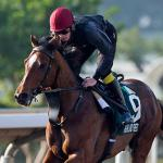 European Horses to Know for Breeders' Cup 2017