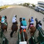 Kentucky Derby Futures: February's Fast-Rising Contenders