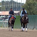 Which Horses Moved Up in the Sept. 22 Breeders' Cup Classic Rankings?