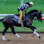Derby Diaries: Patrick O'Neill on Hot Rod Charlie's Louisiana Derby Chances