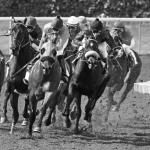 Most Memorable Moments at Saratoga Race Course
