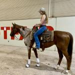 Thoroughbred Makeover Diary: Turning Heads at the Reining Show